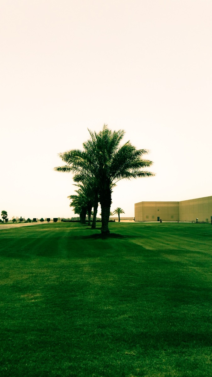 Almarai's Central Processing Plant In Al Kharj