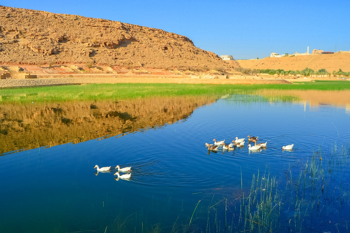 Wadi Namar And Its Hidden Paradise
