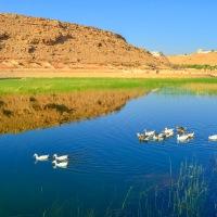 Wadi Namar And Its Hidden Paradise
