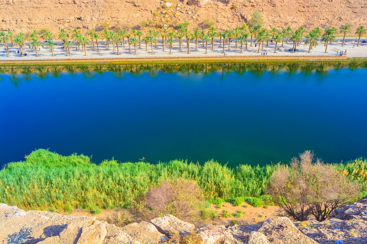 Top 5 Spots for Nature Lovers in Riyadh